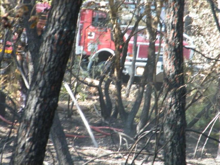 Feu de Forêt rue de l'Usine 24 08 2016. Un petit feu près des habitations.
