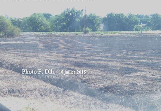 FEUX DE PRAIRIE PRES DE LA DECHETTERIE LE 18.07.2015.