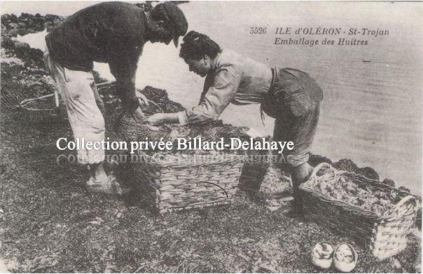 ILE D'OLERON - Saint-TROJAN, l'emballage des huitres.