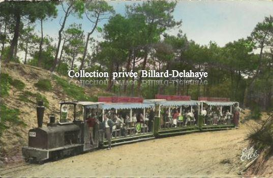CAP-FERRET (Gironde). LE PETIT TRAIN FORESTIER VERS 1950.