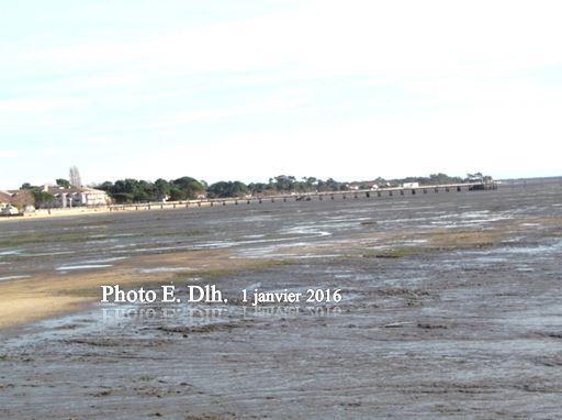 ANDERNOS Bassin d'Arcachon 33 le 1er janvier 2016 à marée basse.
