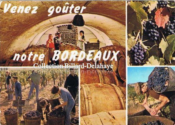 Notre Bordeaux, Venez le goûter.
