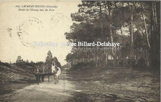 213 - LACANAU - MEDOC. ROUTE DE L'ETANG VUE DU PORT vers 1920.