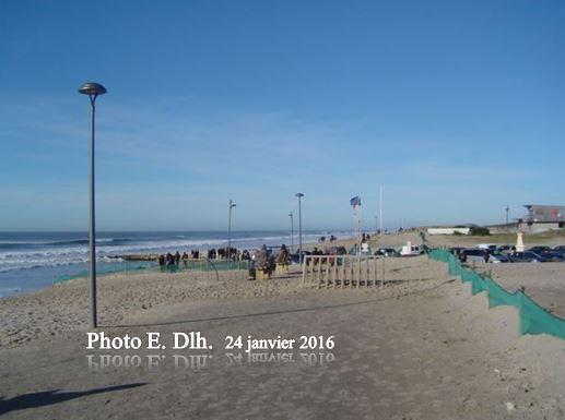 MONTALIVET  Médoc  33. Le 24.01.2016, ce qu'il reste de la plage.