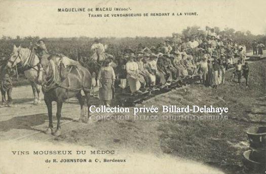 MAQUELINE de MACAU (Médoc). VINS MOUSSEUX R. Johnston & C° Bordeaux.